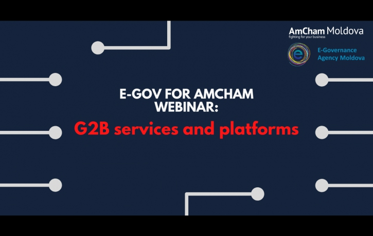 G2B Services and Platforms: an EGov to AmCham ...